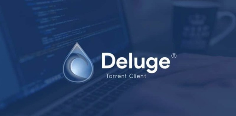 Picture of Deluge logo